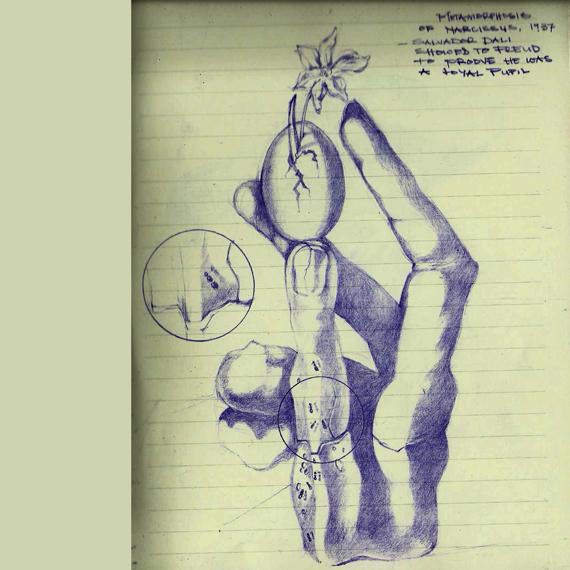 dali study 2